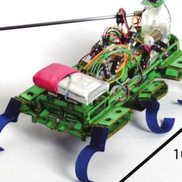 ربات سوسک نما با سرعت بالا(Velociroch)